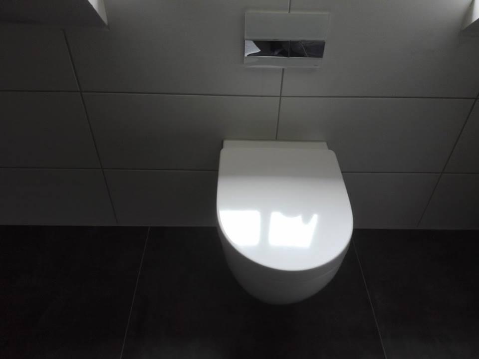 WC-und-Drueckerplatte-SHG-Stetten-Gsantner